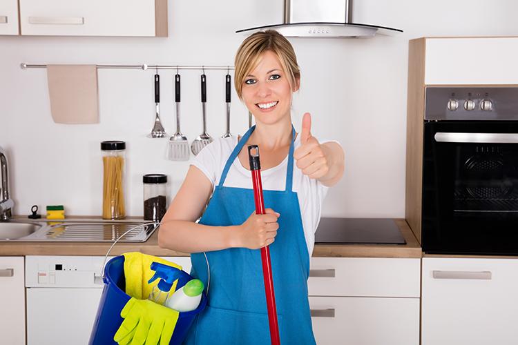 Service de Grand Ménage &femme de ménage, Nettoyage de printemps